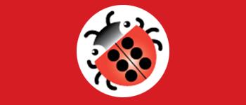 braille-bug_lg